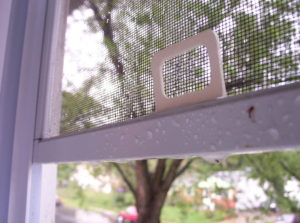 window-screen-after-a-rain-1500587
