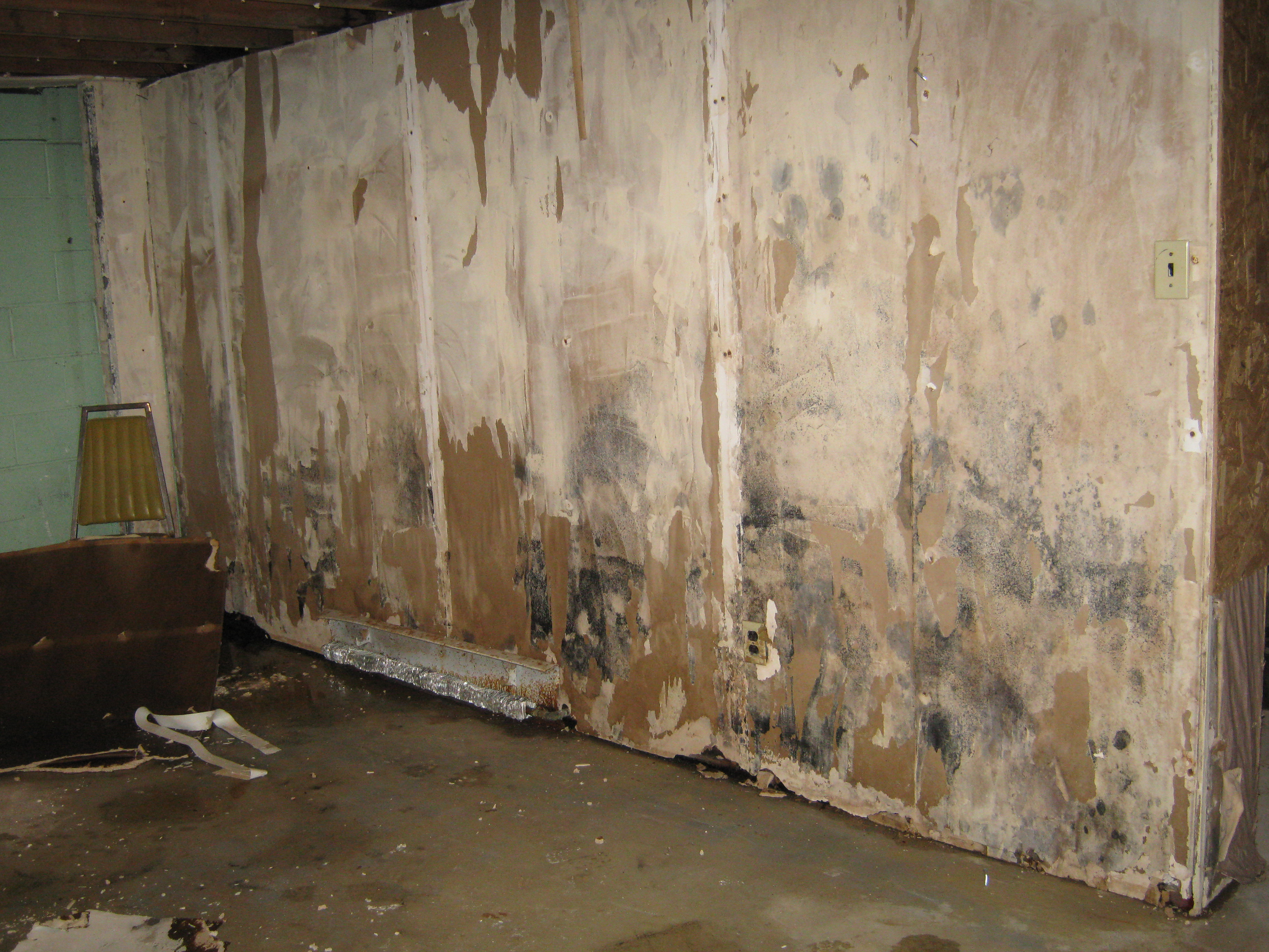Floor damage after a hurricane or flood the flooring blog the water damage and mold doublecrazyfo Image collections